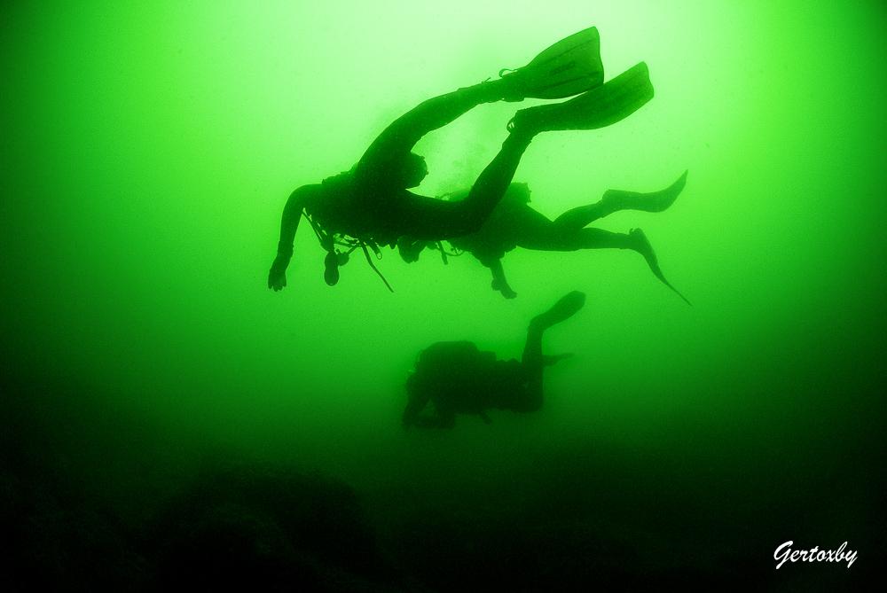 Dykning I Gröna Vatten Vid Släggö